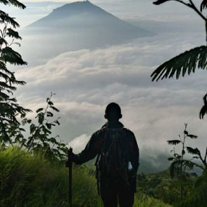 man in rainforest overlooking clouds and mountaintop